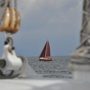 Segelkurs, Rügen, Ostsee, Wikingsurf